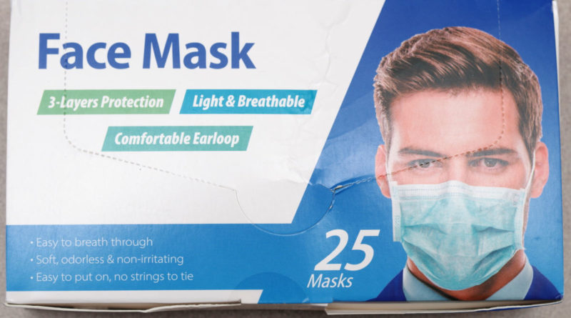 Walmart.com 3-ply Earloop Face Masks